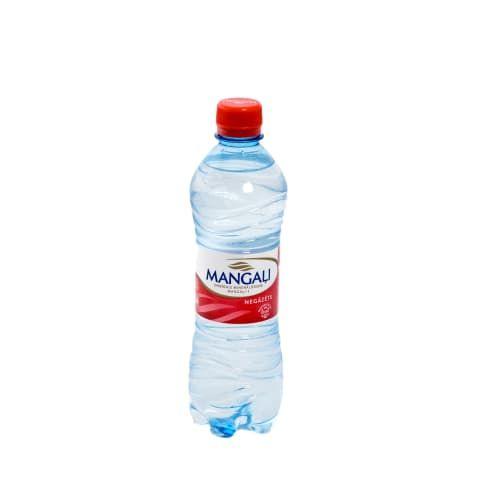 Negāzēts ūdens MANGAĻI 0,5l